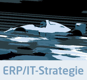 ERP IT-Strategie